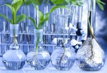 Британия может стать ведущим мировым центром в биотехнологии