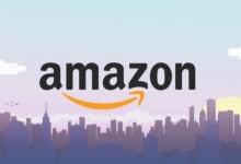 Какие-либо действия в отношении Amazon, Белый дом пока не планирует