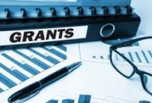 Гранты на развитие бизнеса получили 30 человек из Гагаузии и Тараклийского района