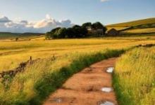 Дороги используемые для сельхоздеятельности, смогут продавать местные власти